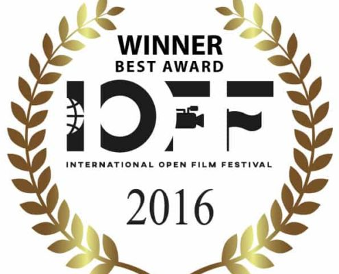 Gagnants International Open Film Festival 2016